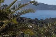 Location vacances Pietrosella (20166)