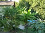 Location vacances Voreppe (38340)