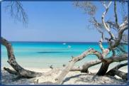 Location vacances Biguglia (20620)