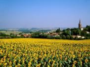 Location vacances Labastide d'Anjou (11320)