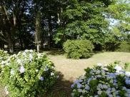 Location vacances Saubrigues (40230)
