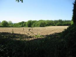 Achat Terrain Longfosse