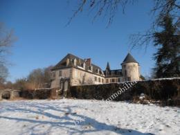 Achat Château 24 pièces Ussel