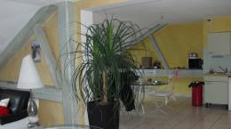 Location Appartement 4 pièces Malbouhans