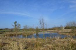 Achat Terrain Landrecies