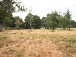 Achat Terrain Sully sur Loire