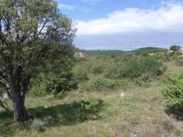 Achat Terrain Gras