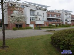 Achat Appartement Neuville en Ferrain
