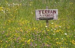 Achat Terrain Val D Ornain