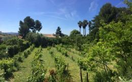 Achat Maison Aix en Provence