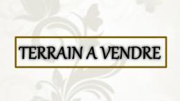 Achat Terrain Bourgueil
