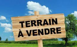 Achat Terrain Vacquiers