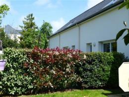 Location Maison 3 pièces Le Bourgneuf la Foret