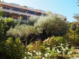 Achat studio St Tropez
