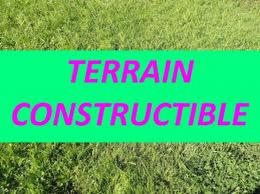 Achat Terrain Cayenne