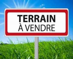 Achat Terrain Maricourt