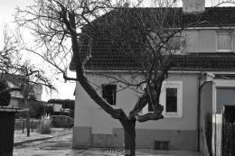 Achat Maison 3 pièces Wittenheim