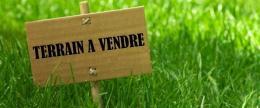 Achat Terrain Ste Anne sur Vilaine