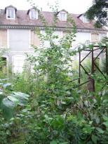 Achat Immeuble 19 pièces Neufchateau