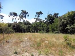 Terrain Ronce les Bains &bull; <span class='offer-area-number'>684</span> m² environ