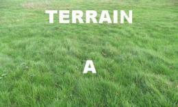 Achat Terrain Les Clerimois