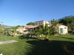 Achat Villa 7 pièces Calvi