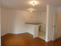 Appartement Lyon 07 &bull; <span class='offer-area-number'>50</span> m² environ &bull; <span class='offer-rooms-number'>2</span> pièces