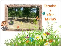 Achat Terrain Tartas