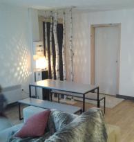 Location Appartement 3 pièces Villard de Lans