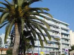 Appartement Cagnes sur Mer &bull; <span class='offer-area-number'>27</span> m² environ &bull; <span class='offer-rooms-number'>1</span> pièce