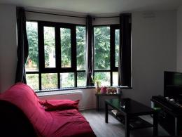 Appartement Issy les Moulineaux &bull; <span class='offer-area-number'>48</span> m² environ &bull; <span class='offer-rooms-number'>2</span> pièces