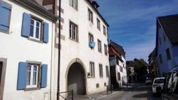 Achat Appartement 2 pièces Molsheim