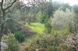 Achat Terrain Causse de la Selle