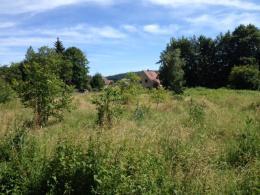 Achat Maison Dinsheim sur Bruche