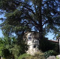 Maison Cros de Cagnes &bull; <span class='offer-area-number'>100</span> m² environ &bull; <span class='offer-rooms-number'>4</span> pièces