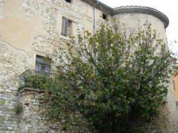 Achat Maison 12 pièces Rousset les Vignes