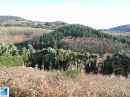 Achat Terrain St Pons de Thomieres