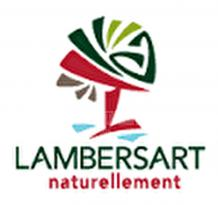 Location Maison Lambersart
