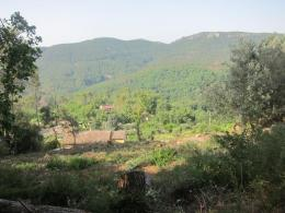 Achat Terrain Bagnols en Foret