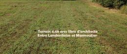 Achat Terrain Westhouse Marmoutier