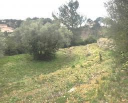 Achat Terrain Roquevaire
