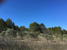 Achat Terrain Le Puy Ste Reparade