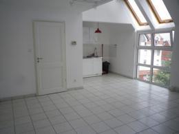 Appartement Illkirch Graffenstaden &bull; <span class='offer-area-number'>53</span> m² environ &bull; <span class='offer-rooms-number'>2</span> pièces