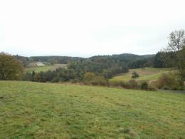 Achat Terrain St Pal de Mons