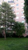 Achat Appartement 4 pièces Vandoeuvre les Nancy