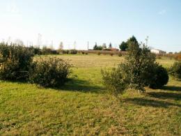 Achat Terrain Bois