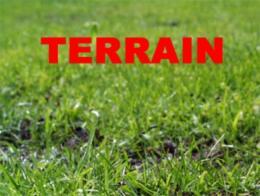 Achat Terrain Allamps