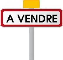 Achat Maison 13 pièces St Andre de Corcy