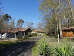 Maison Rion des Landes &bull; <span class='offer-area-number'>125</span> m² environ &bull; <span class='offer-rooms-number'>5</span> pièces