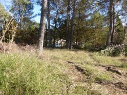 Achat Terrain Ste Anastasie sur Issole